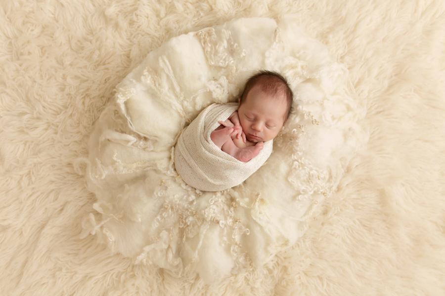 Beautiful newborn pictures taken in Waukesha County, Wisconsin.